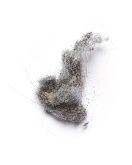 Dust Portrait, 2013