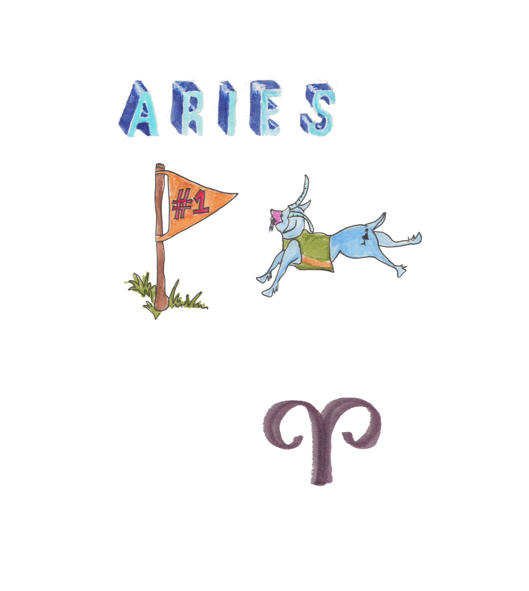 1.ARIES copy