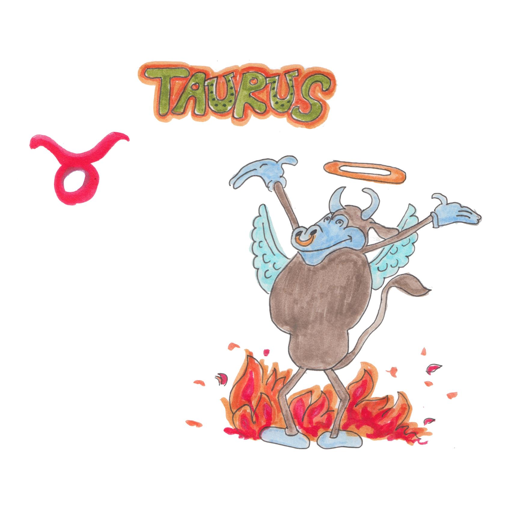 2.TAURUS copy