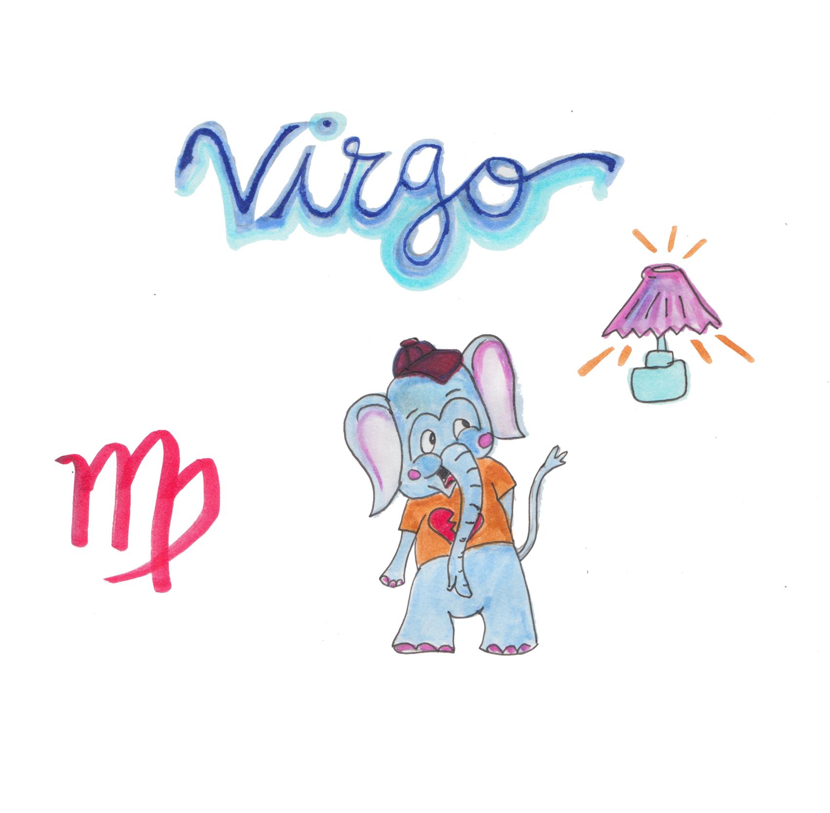 6.VIRGO copy